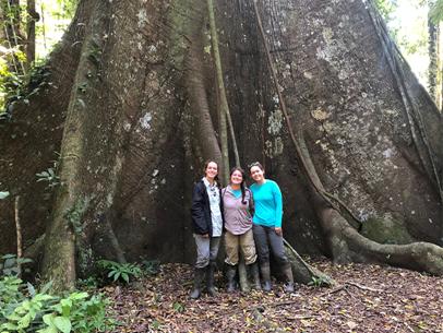 Team Members in front of Tree