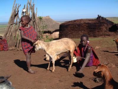 African children with animals
