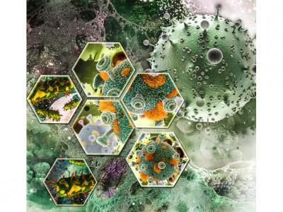 Illustration of HIV Cells