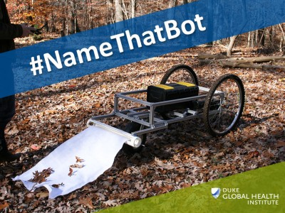 Name_that_Bot