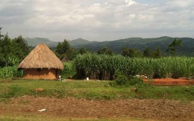 Faculty member Eve Puffer works with families in rural Eldoret, Kenya