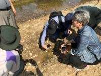 Nyunt examines mosquito larvae