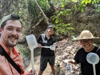 Chris Hayes (far left) works with collaborators in the field to conduct a mosquito larval survey.