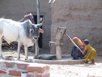 Hand pump. Photo taken by Alec Shannon, Rajasthan, 2014